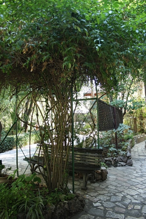 внутри сада