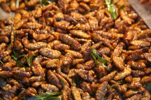"""""""готовые"""" насекомые или просто вкусная еда."""