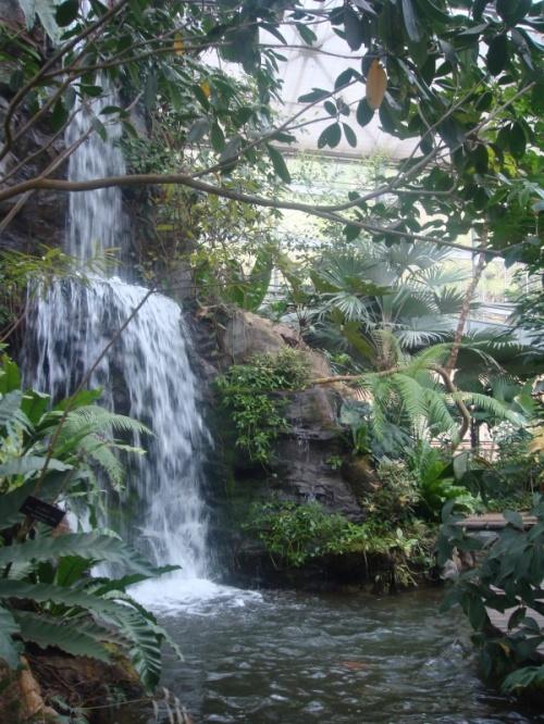 без водопадов даже в оранжереях - никуда