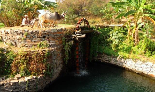 по дороге из Удайпура в Ранакпур