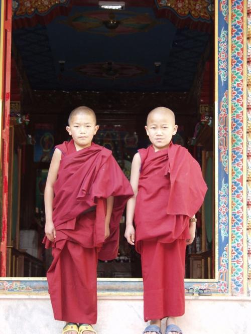 Маленькие Будды... :)