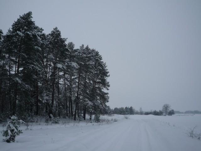 зима? :)