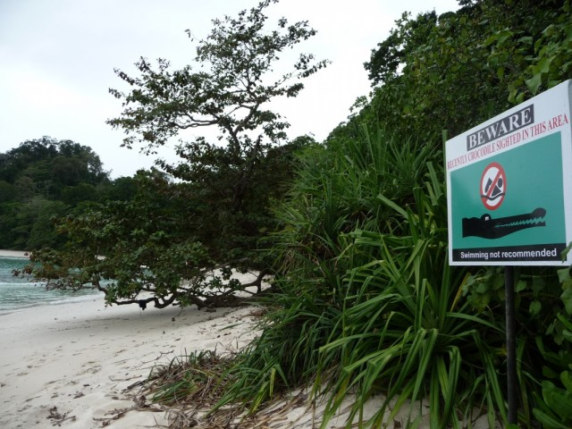 Хоть и висит предупреждение, крокодилы не тут, а слева от 7 пляжа. Достоверно.
