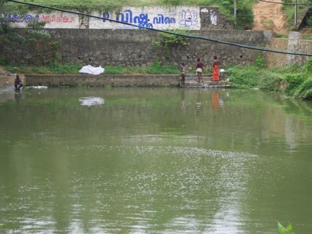 200 м. от пляжа в джунгли и мы в Индии (настоящей),здесь купаются, стираются  и живут.   .