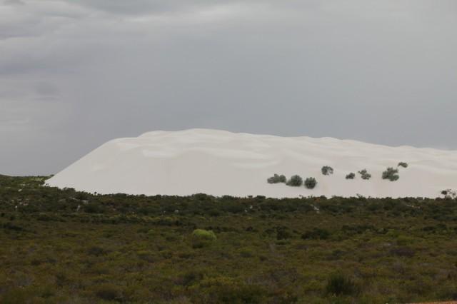 островок пустыни