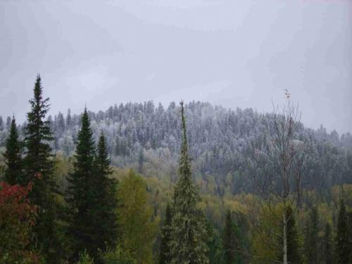 проснулись,,, а в горах лег снег