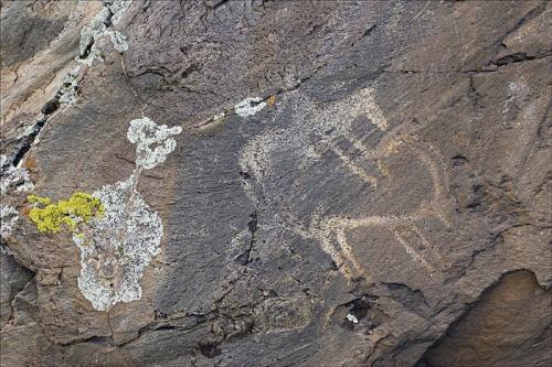 Урочище Калбак-Таш. Петроглифы (древние рисунки на скалах).