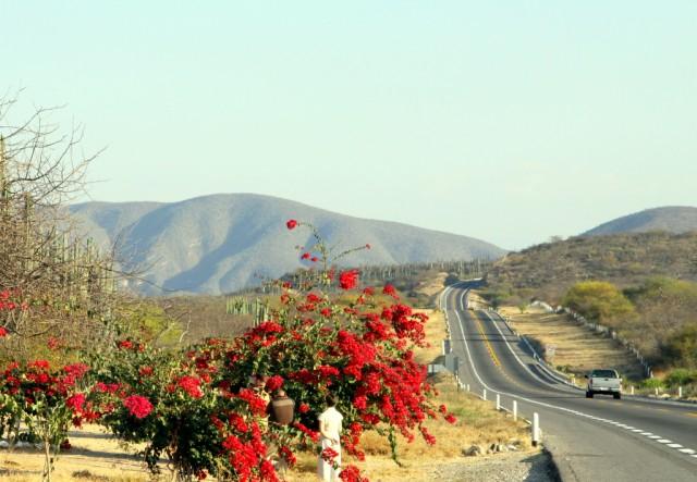 Мексиканская дорога