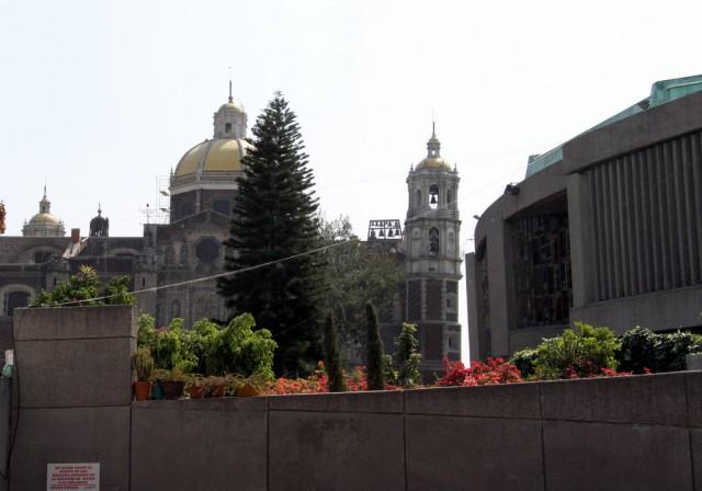 Желтые крыши Старой Базилики
