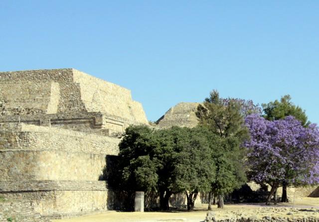 В 1931 г. город обнаружил археолог Альфонсо Касо