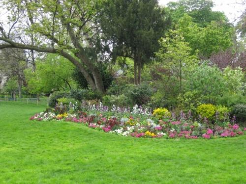 цветочный рай в отдельно взятом парке