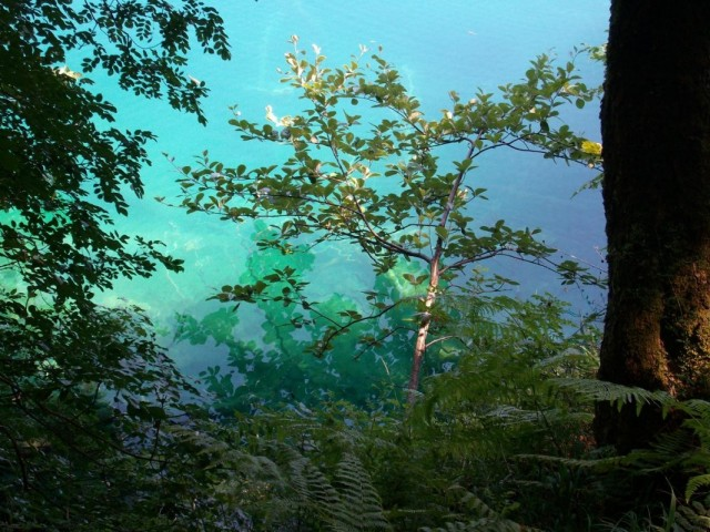 прозрачная вода в озерках Плесковиц
