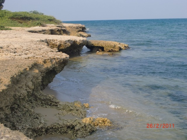 берег к востоку от Рамешварама 2