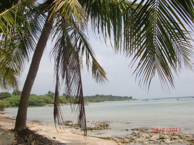 берег к востоку от Рамешварама 1