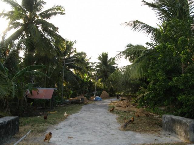 на главной дороге острова Нейл, Андаманы