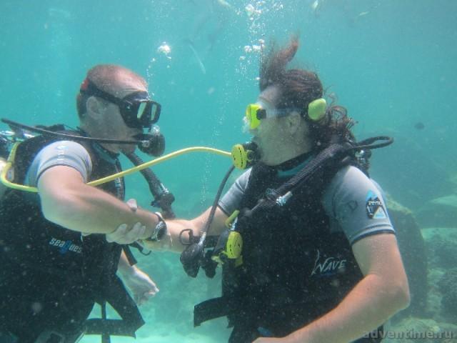 Один акваланг на двоих - очередное упражнение...