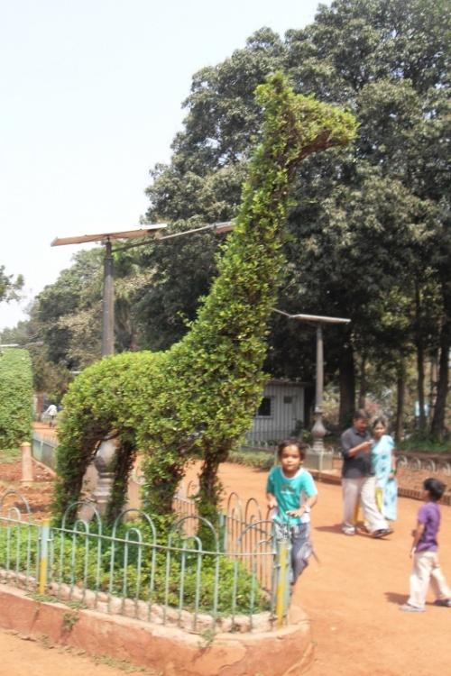 Висячие сады. Мумбаи