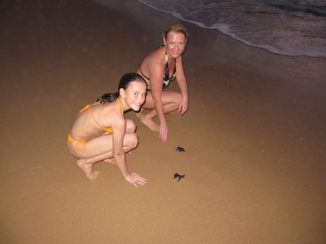 отпускаем черепашек в их первое плаванье