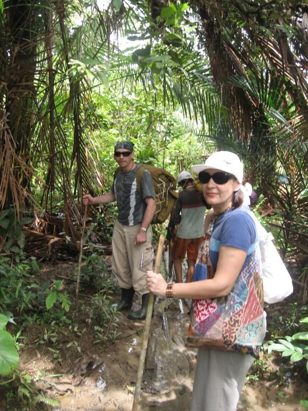 идем в джунгли