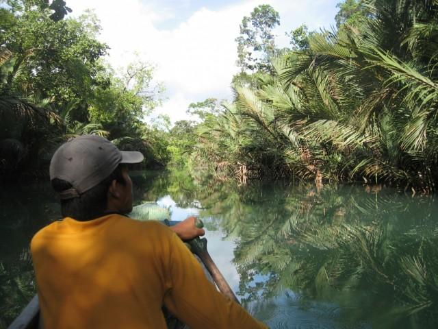 Плывем на каноэ в джунглях Западной Явы