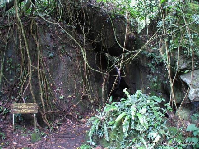 Пещера летучих мышей (у входа змею встретил)