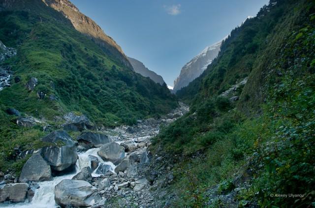 пейзаж с горной речкой