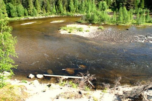река Колвица.Воду можно пить.