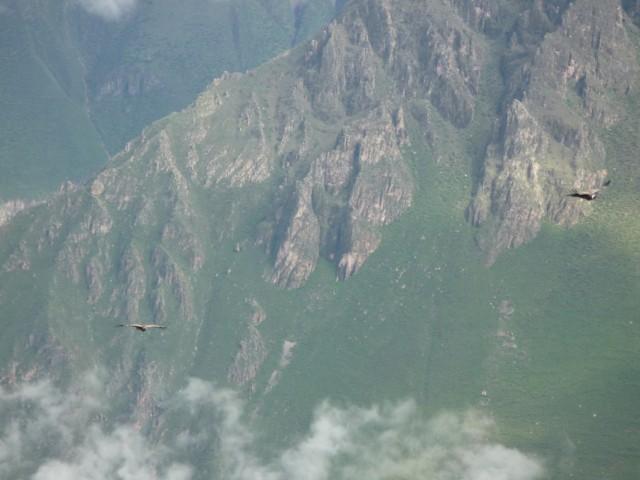 Юж.Ам. Перу. Каньон Колка