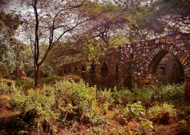 Заколдованный Парк 19