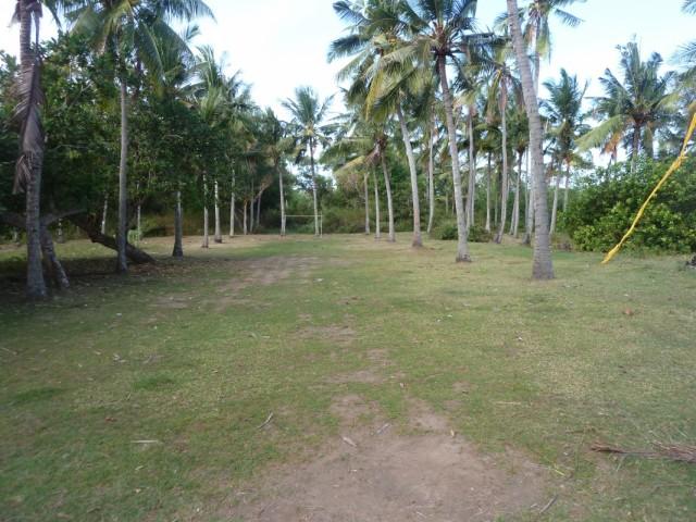 футбольное поле на кокосовых плантациях