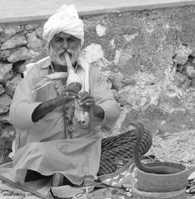 Заклинатель змей в Индии