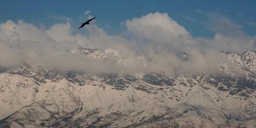 Выше гор могут быть и орлы!