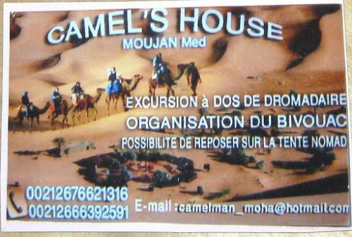 визитка организаторов camel трека - рекомендую