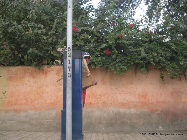 """""""Морды"""" закрывающие офиц. парковки! - у короля воруют!!!"""