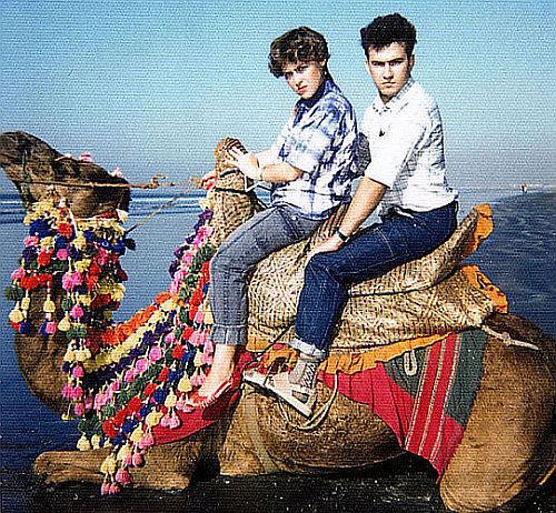 верблюд на Клифтоне