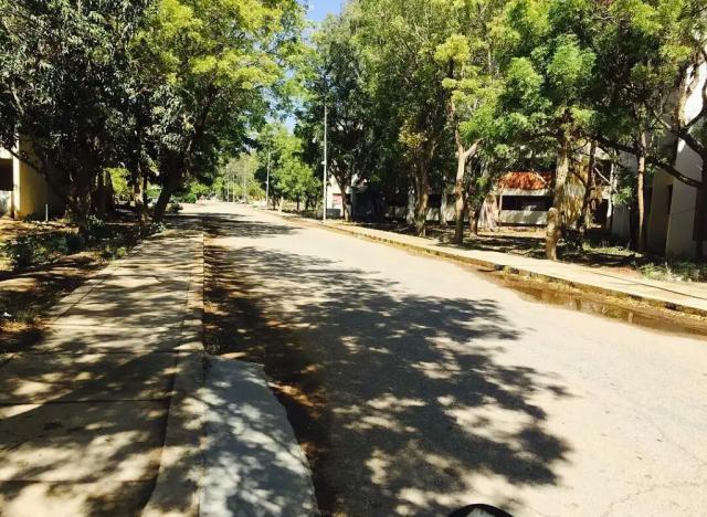 Дорога от Т2 к школе.