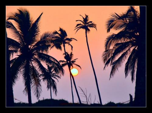 Гоа, пляж Моржим
