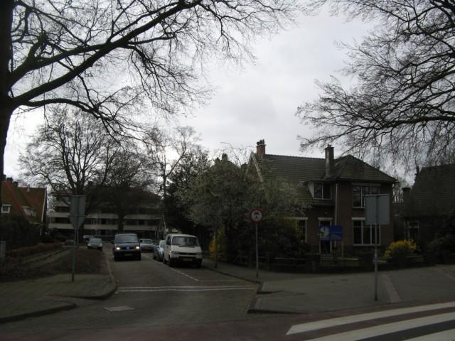 """Улицы Эммена. Снова эта """"сакура"""" - так и не понял что это за деревья, может и правда вишня"""