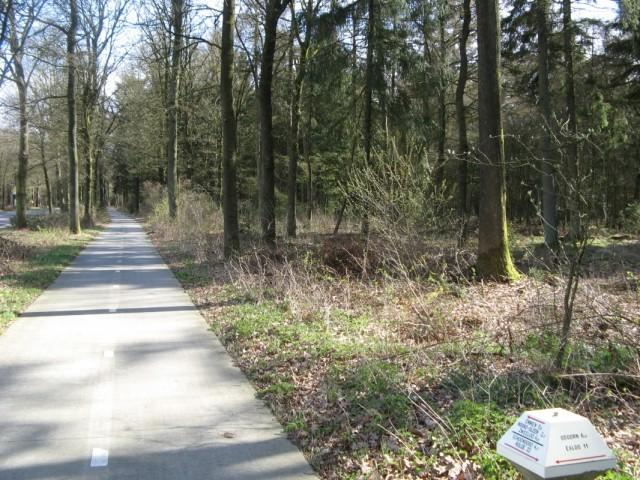 Велосипедная дорожка параллельно ей. До Ноорд-Слеена 2,2 километра