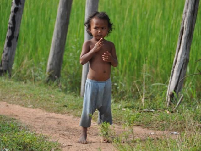 Камбоджа. Ангкор