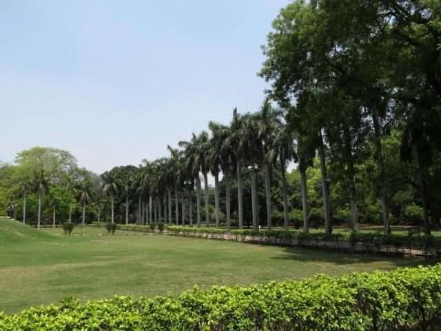 Lodi Garden