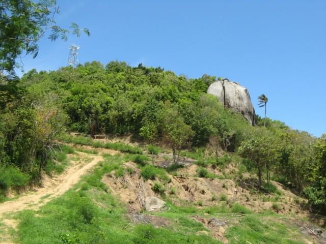 Гора на хаадринском полуостровке, на горе - вышка. Надо залезть...