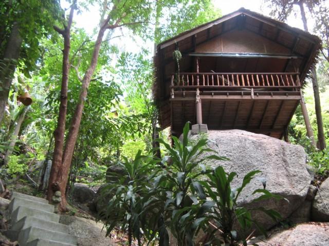 Бунгало в джунглях за 1050 бат