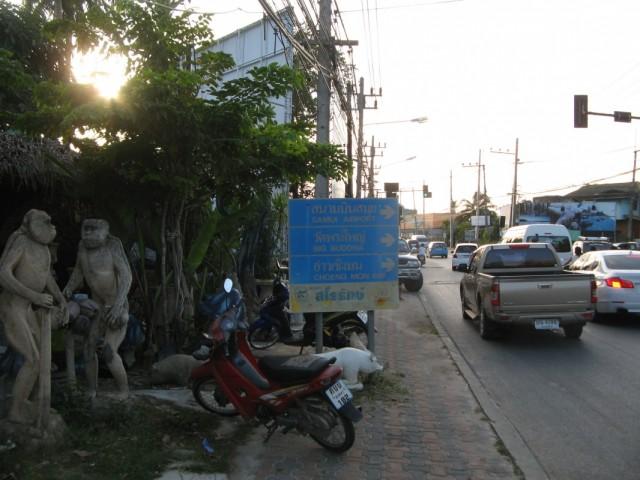 Обезьяны напротив входа в Ват Бо Пхут
