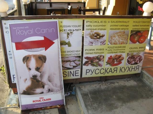 """Get started with Royal Canin, потом - кефир, солёные огурцы, капуста и помидоры! Только у нас только сейчас - """"весёлые обеды""""!"""