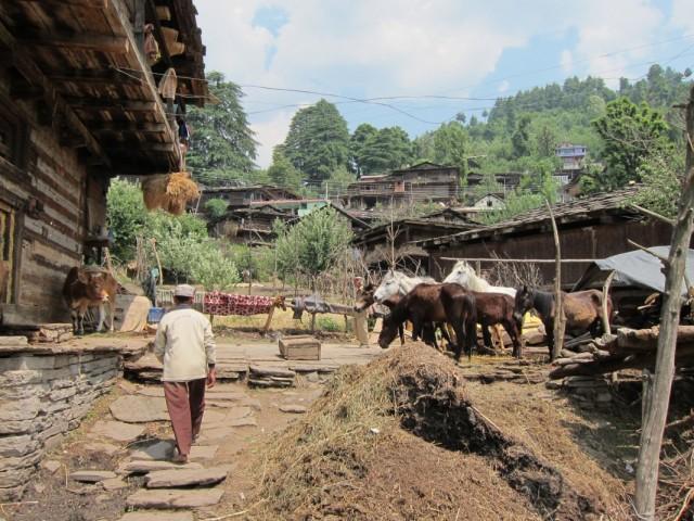 Жизнь деревни