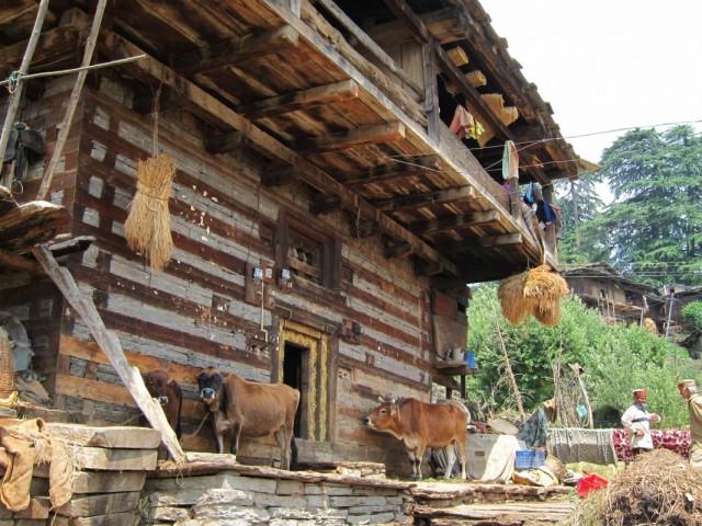 Жизнь деревни1
