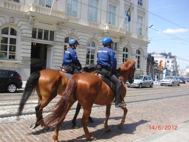 На улицах Брюсселя 6