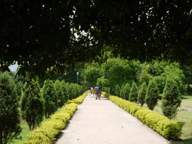 Парк рядом с мемориалом
