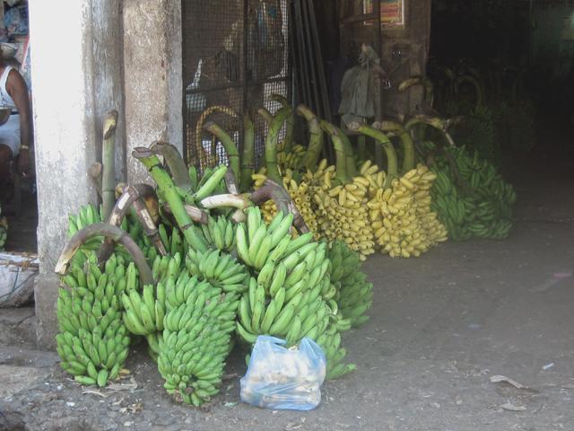Вот так тут продаются бананы